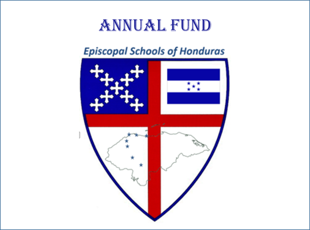 Annual Fund.png