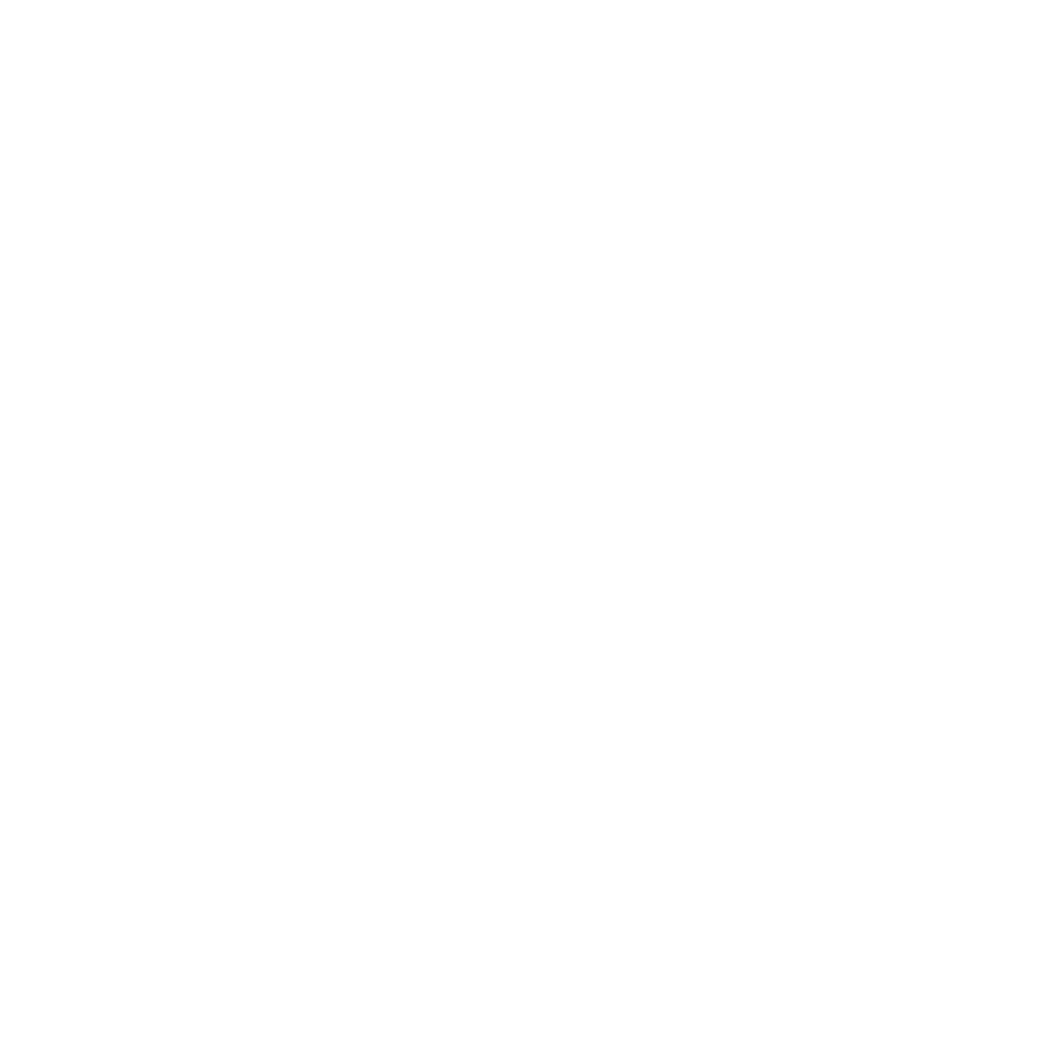 CROOKED SPIES