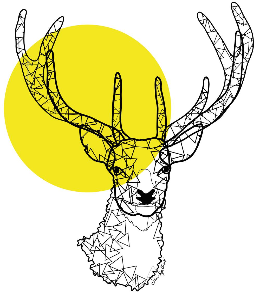 Graphic Deer.jpg