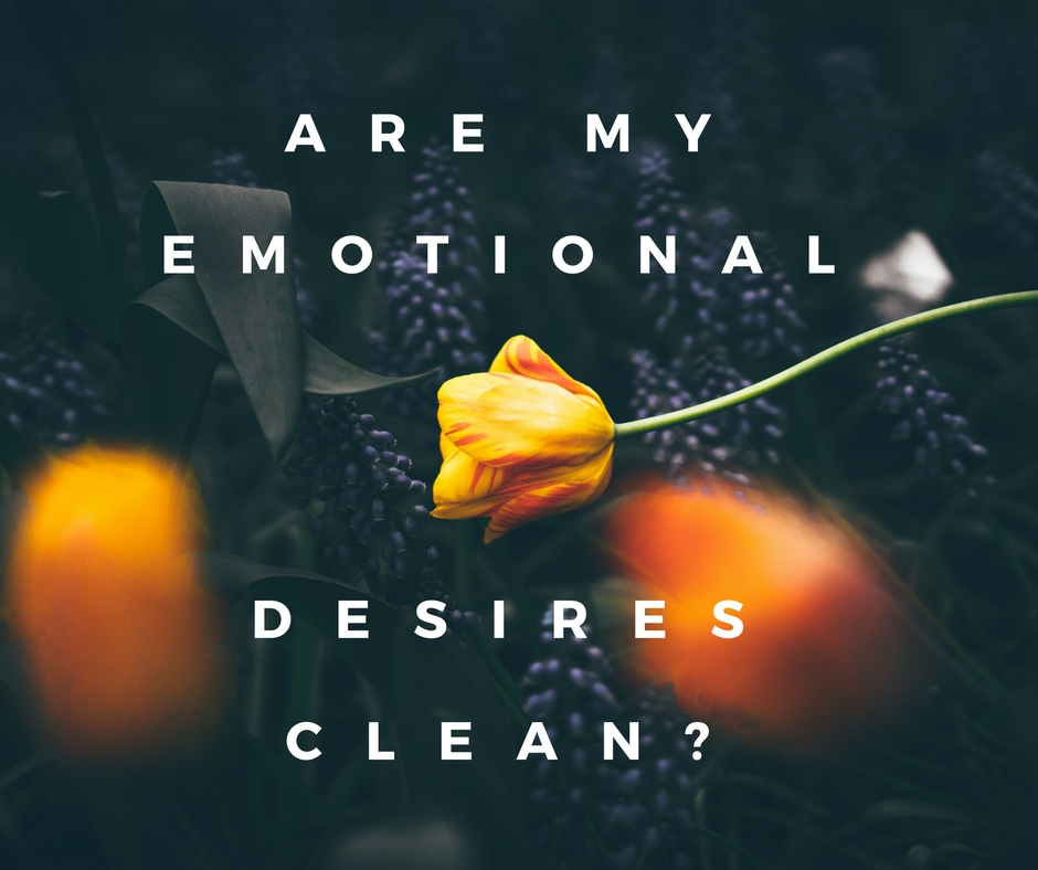 """Emotional cravings, I began to notice, were not my demise, they were God's blueprints tucked into my soul. When I followed my emotional cravings I was following God's plan."""
