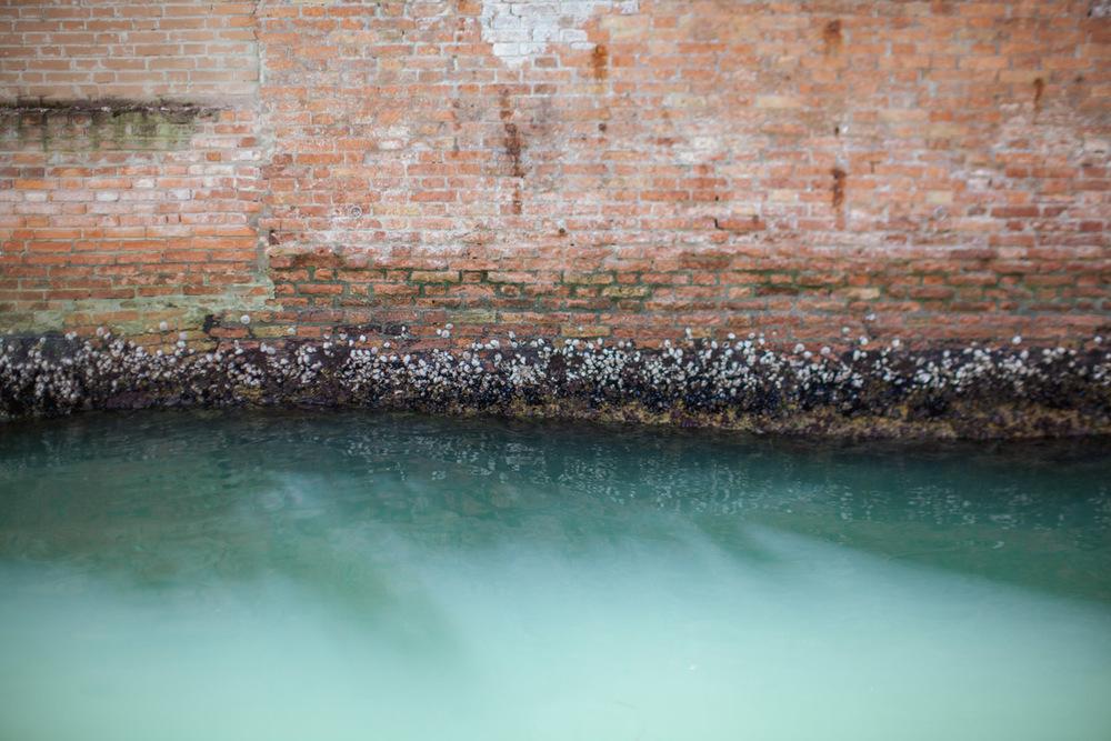 Venice-78.jpg