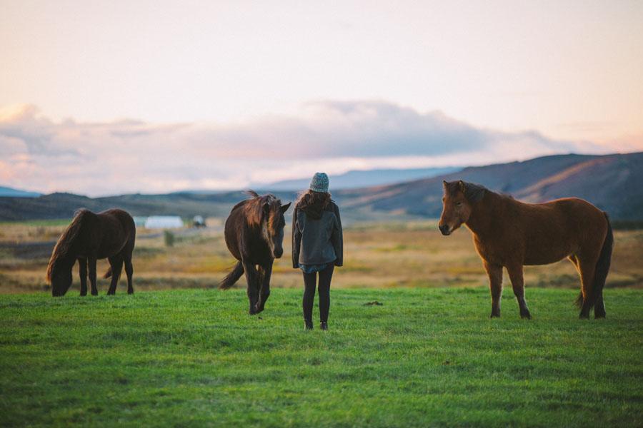 Emily and horses-5039.jpg