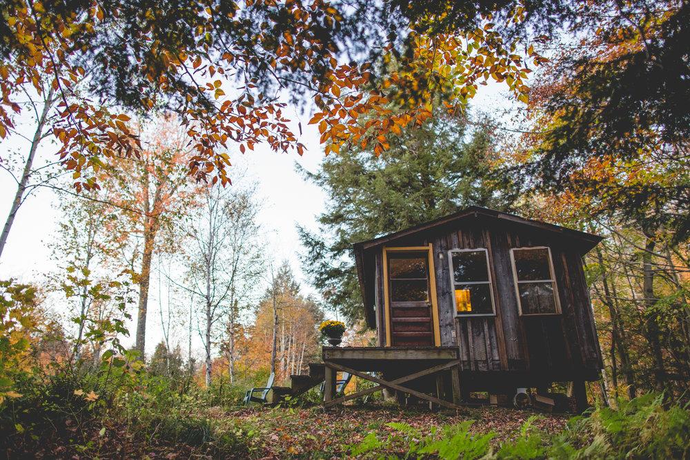 cabin-1009.jpg