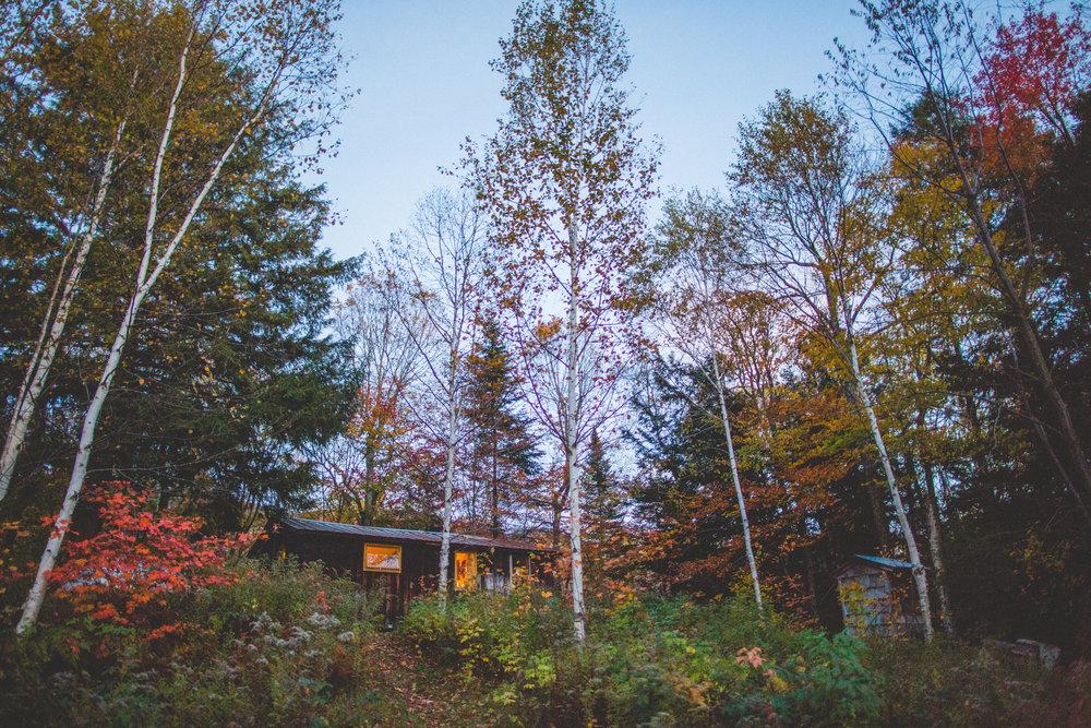 cabin-1169.jpg