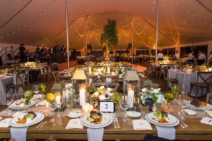 tennt-setting-harvest-ball-courtesy-of-chicago-botanic-garden.jpg