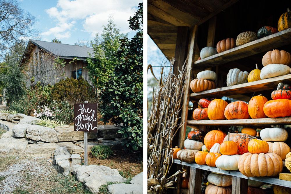 pumpkin-fall-wedding-tennessee.jpeg