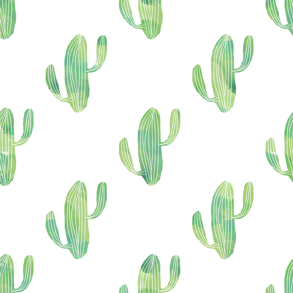 Cactus Background.png