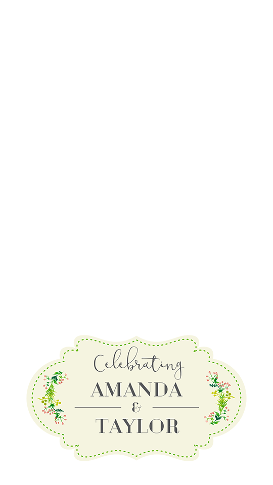 Labeled Geofilter.png