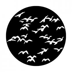 beach birds.png