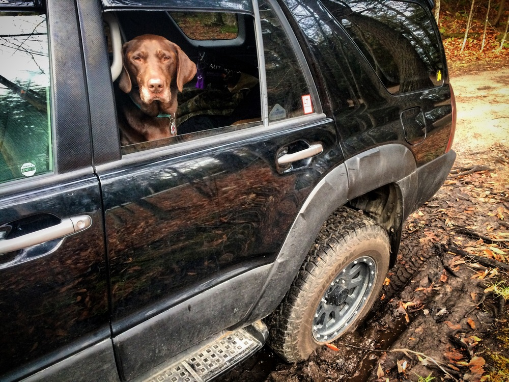 Seriously? You went out of your way to find this mud. If you get stuck, I'm not pushin'.