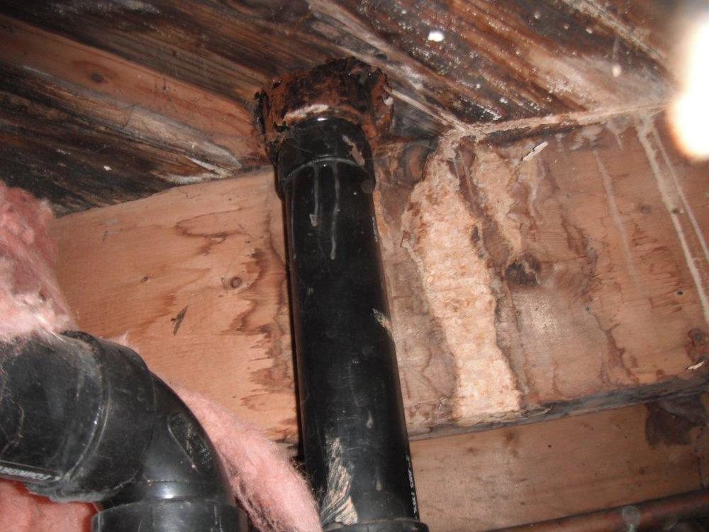 Plumbing leak in crawlspace