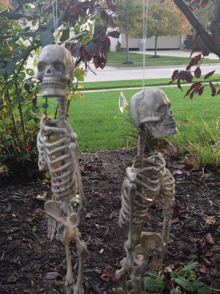october-front-door-decor-skeletons