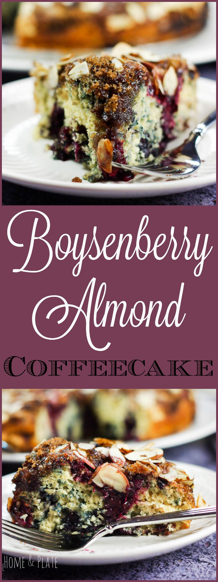 Boysenberry Crunch Coffeecake | www.homeandplate.com | Enjoy cake anytime of the day with this moist and crunchy boysenberry coffeecake.
