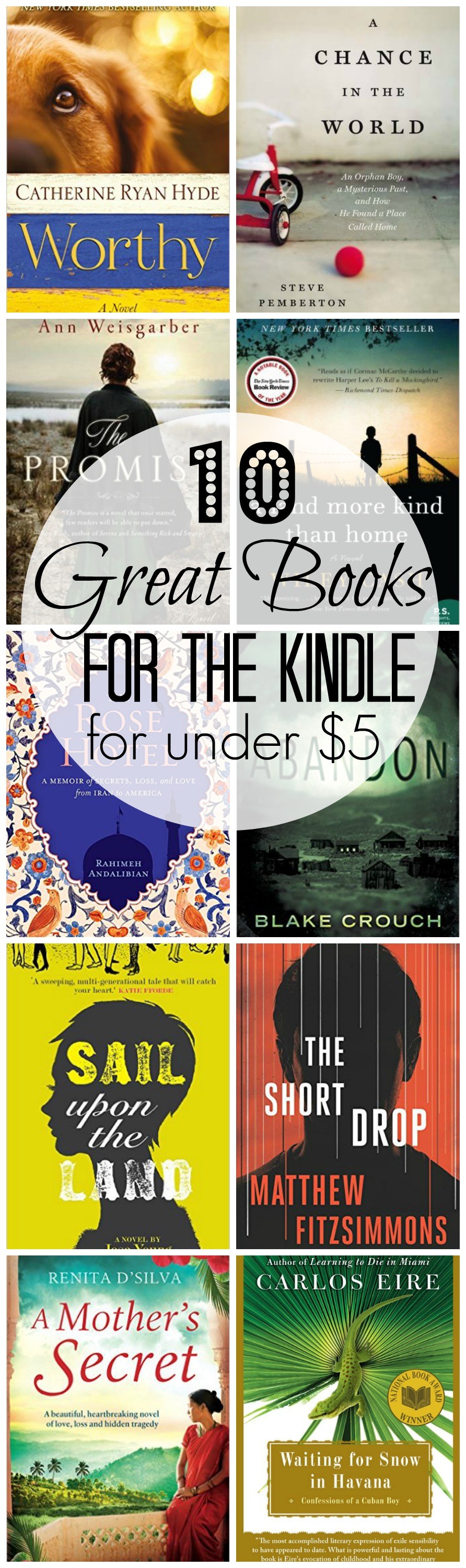 10 Great Books for the Kindle for Under $5 | www.homeandplate.com | Great reads for your Kindle without spending a lot of money.