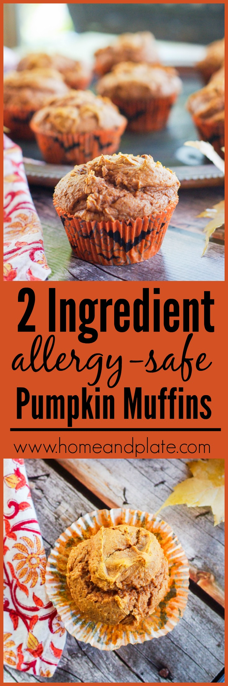 Two Ingredient Allergy Safe Pumpkin Muffins | www.homeandplate.com | Be the hero of your child's classroom party this Halloween and volunteer to bring in a snack that is safe for all. My two ingredient allergy safe pumpkin muffins are easy to make and delicious.
