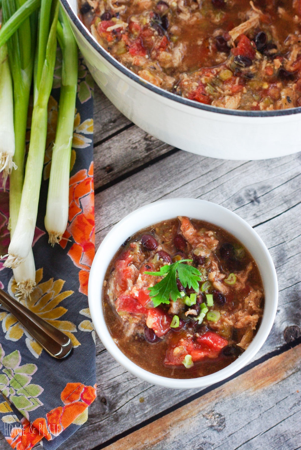 Tex-Mex Pork Stew | www.homeandplate.com | Enjoy a simple and quick soup that packs a little heat to warm you up this winter.
