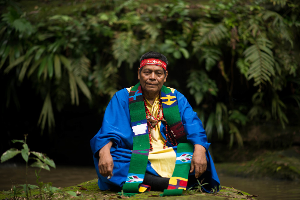Maestro Juan Flores sitting in the place of the spirits at Mayantuyacu, Peru (2014).