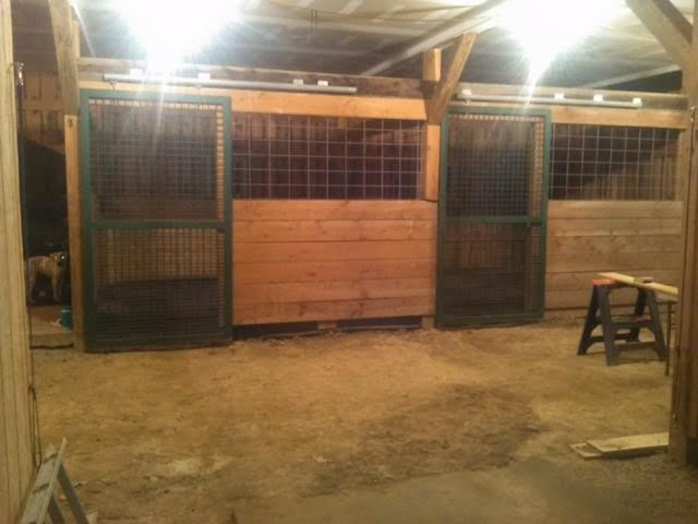 (p.s. we have closed in the wood on the bottom of the stall since then and did not put a horse in it until it was fixed :) )