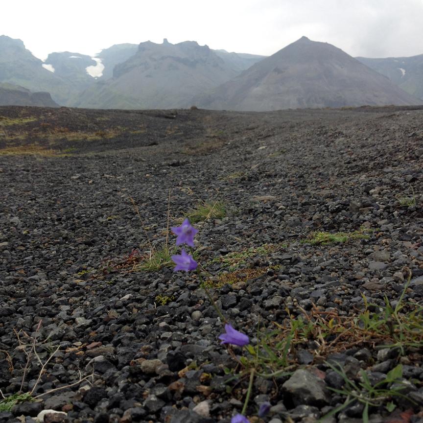 Vatnajökull Glacier, Southeast Iceland