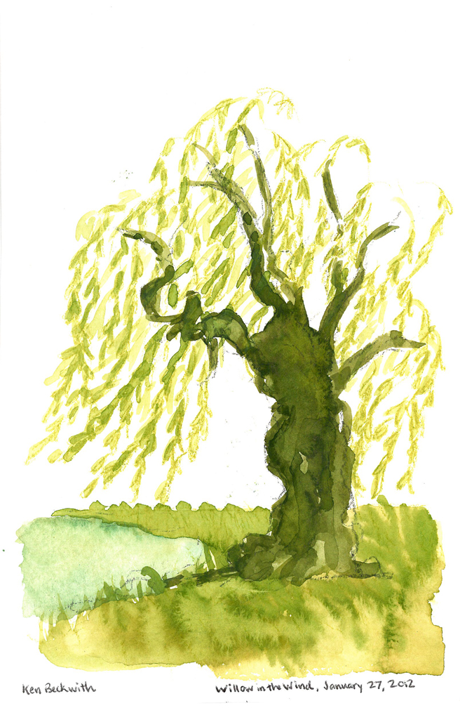 Willow in the Wind, Watercolor and Gouache