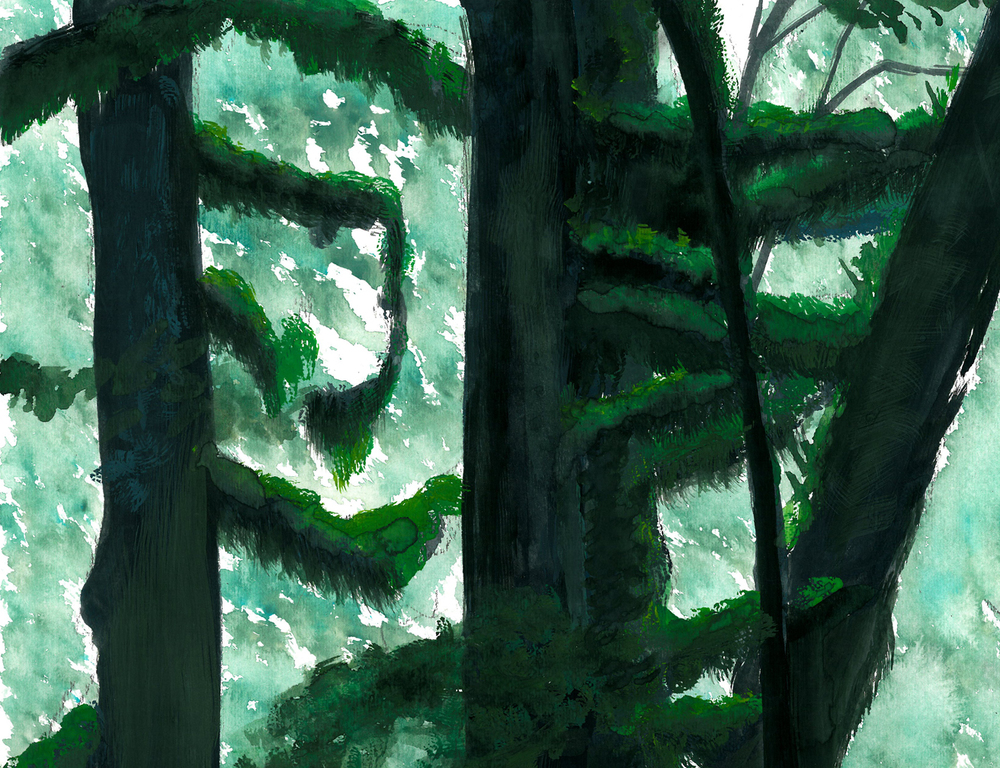 Mossy Yakushima Island Cypress, Watercolor and Gouache