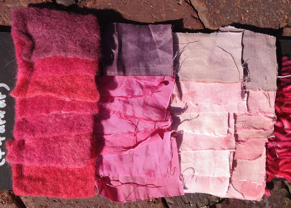 Cochineal in Varying Alkalinities + Iron