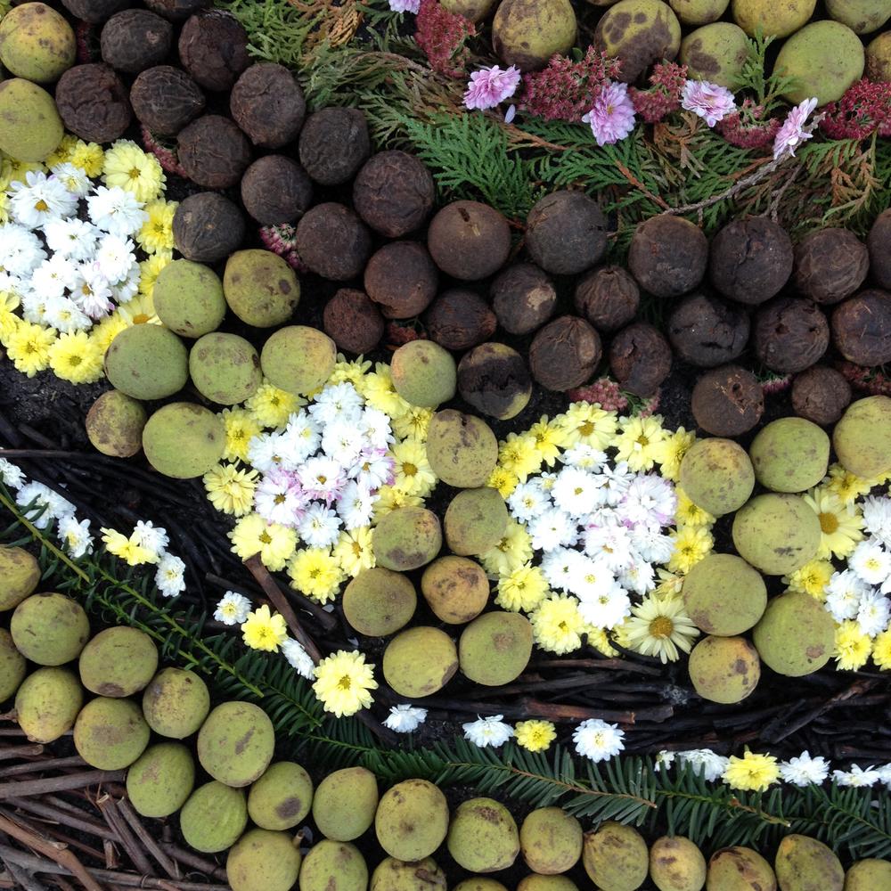 Floral Carpet Textures & Strata