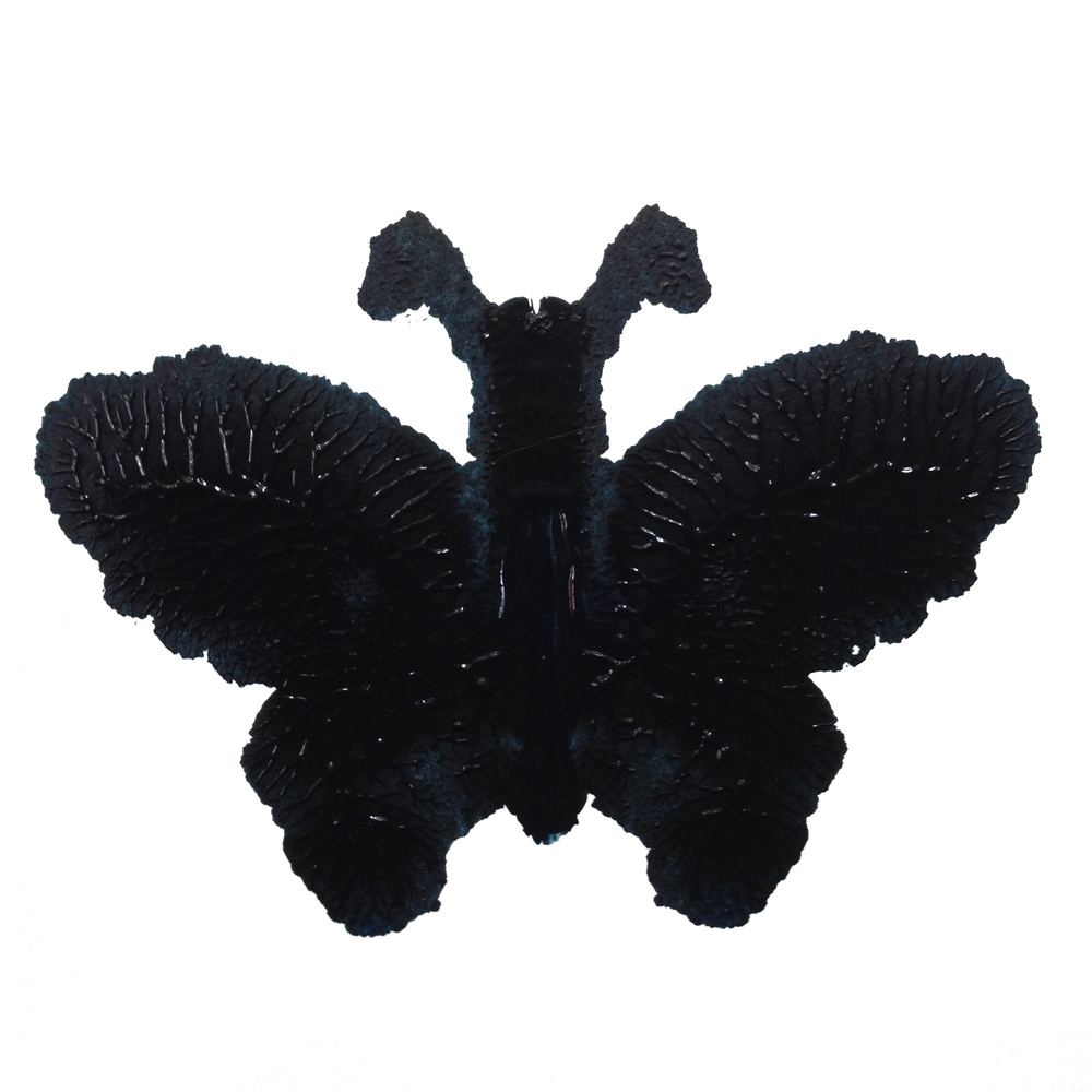 Black Butterfly, Inkblot with watercolor
