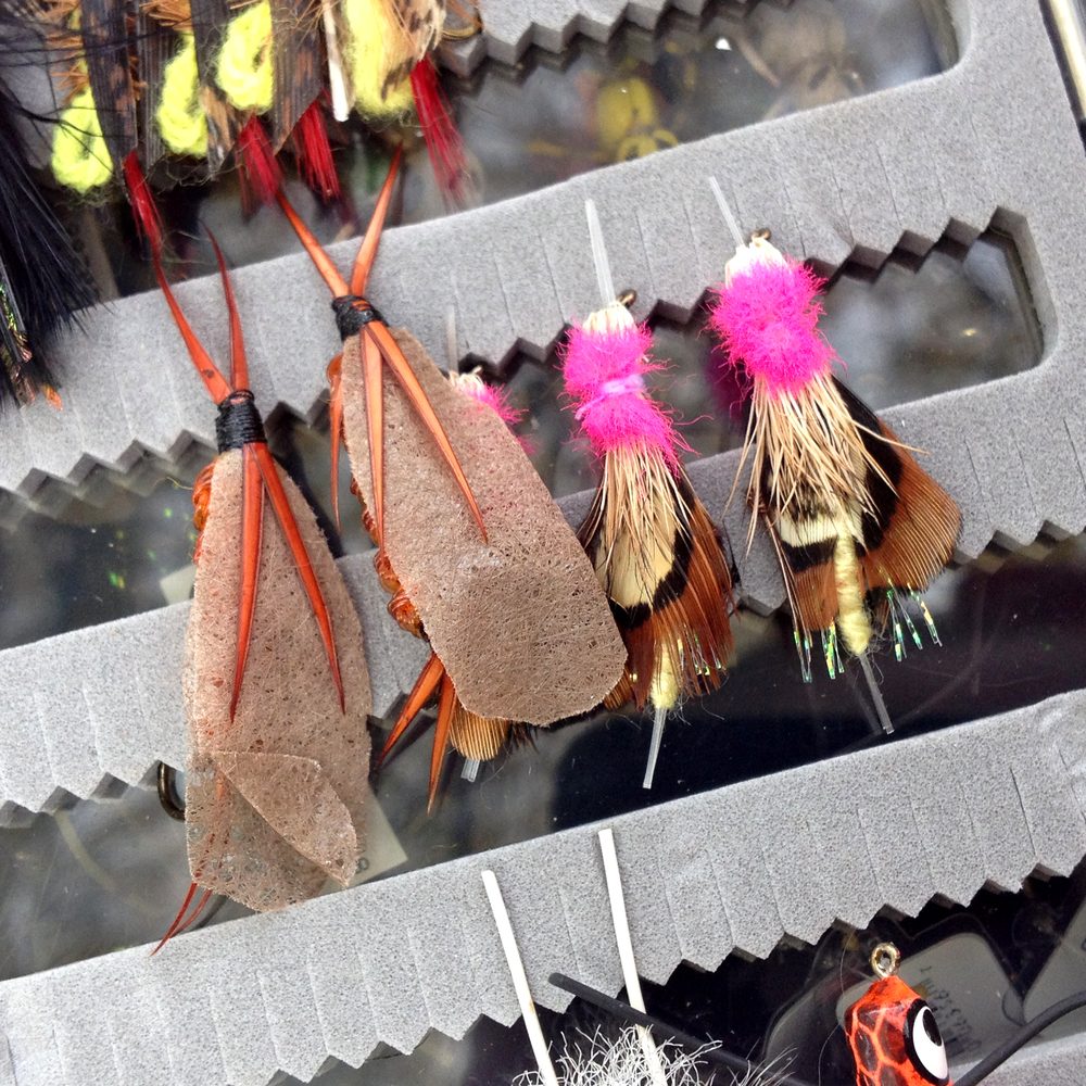 Fishing lures come in all kinds of colors and shapes.