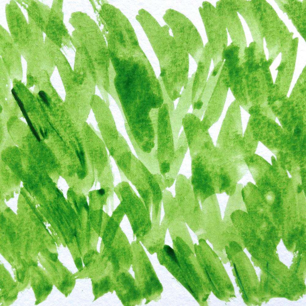 Grass textured pattern.