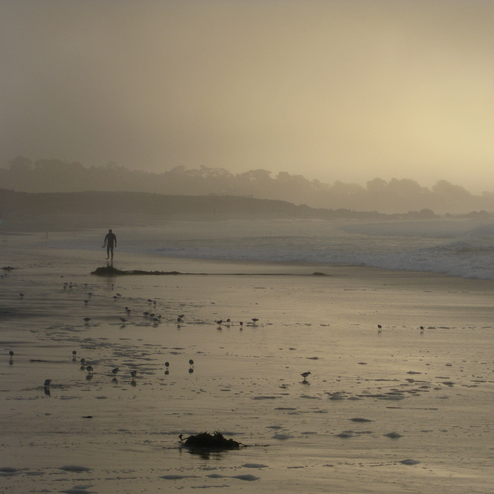 Surfer and the Sea, Asilomar, California