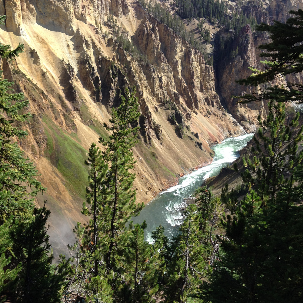 Yellowstone River, Yellowstone National Park, Wyoming