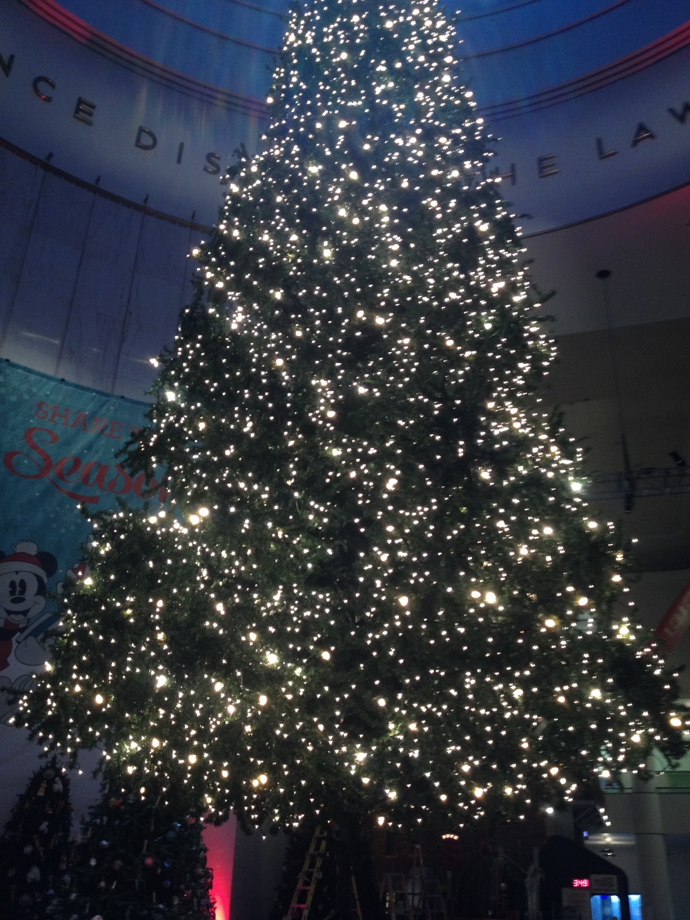 The Museum's tree took a cue from the Icelanders this year. Where we once decorated in all white, the museum used to go overboard in color. We still have our white lights. The museum got classy this year.