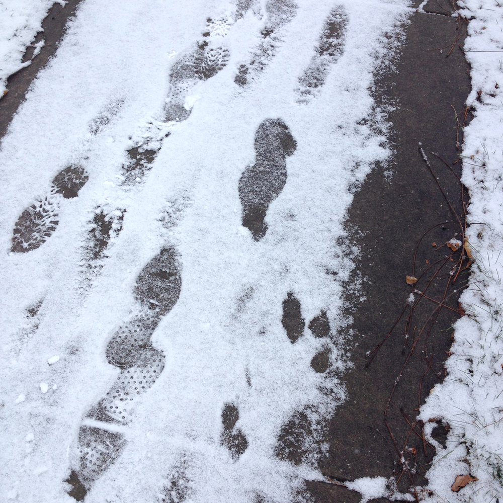 Footprints in the Snow, Shabbona, IL