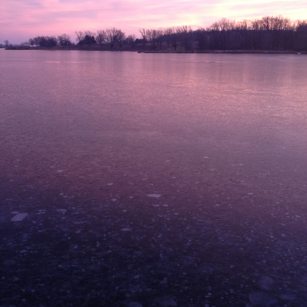 Frozen Violet Lake , Shabbona, IL