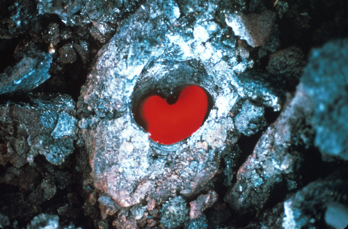 "Heart shaped lava tree ""This is an image from 1968, taken looking down on top of a lava flow from Kilauea. Lava flows from Hawaiian volcanoes often encounter the native ohia trees, which make up a large portion of the rainforests on that island. Those trees hold a lot of water in their structures. When lava hits those trees, the water boils off and the tree burns away, but there is enough water to cool a cylinder of lava around the place where the tree trunk used to be. When the lava flow drains away, these chilled cylinders of lava still stand tall as lava trees. This photo looks down the heart of one that happened to leave a heart-shaped impression in the center, with lava still flowing underneath."""