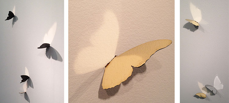 Simple butterfly silhouettes made 3-D.