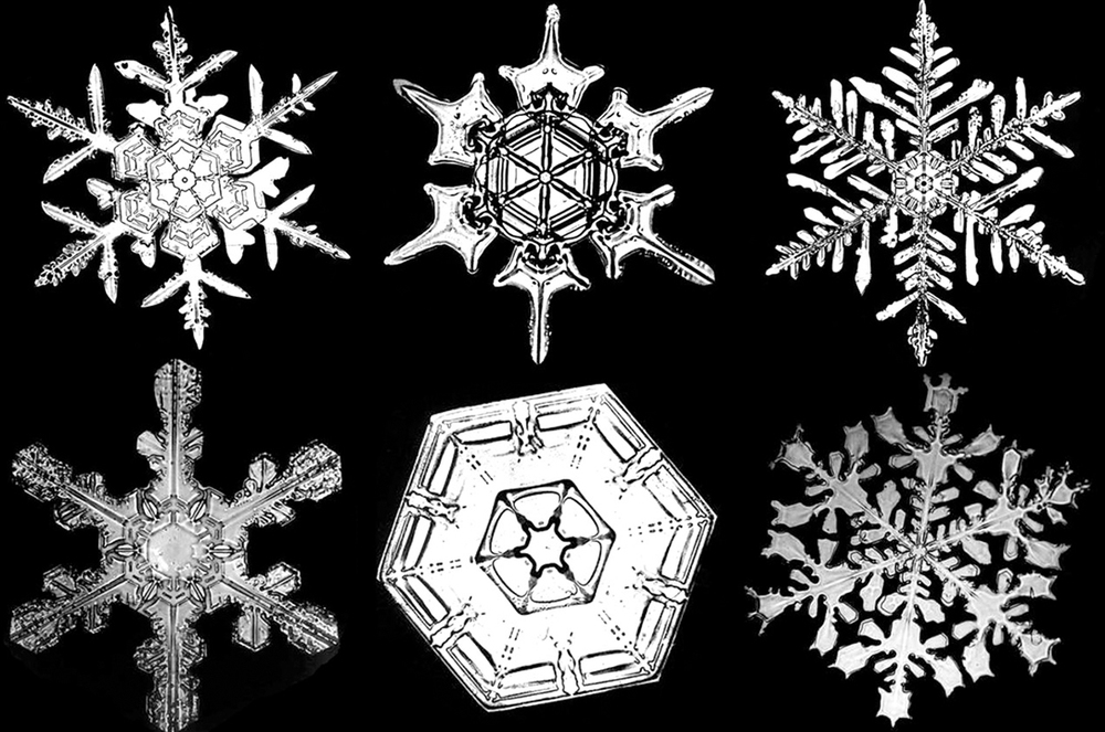 W.A. Bentley's documented photographs of snowflakes