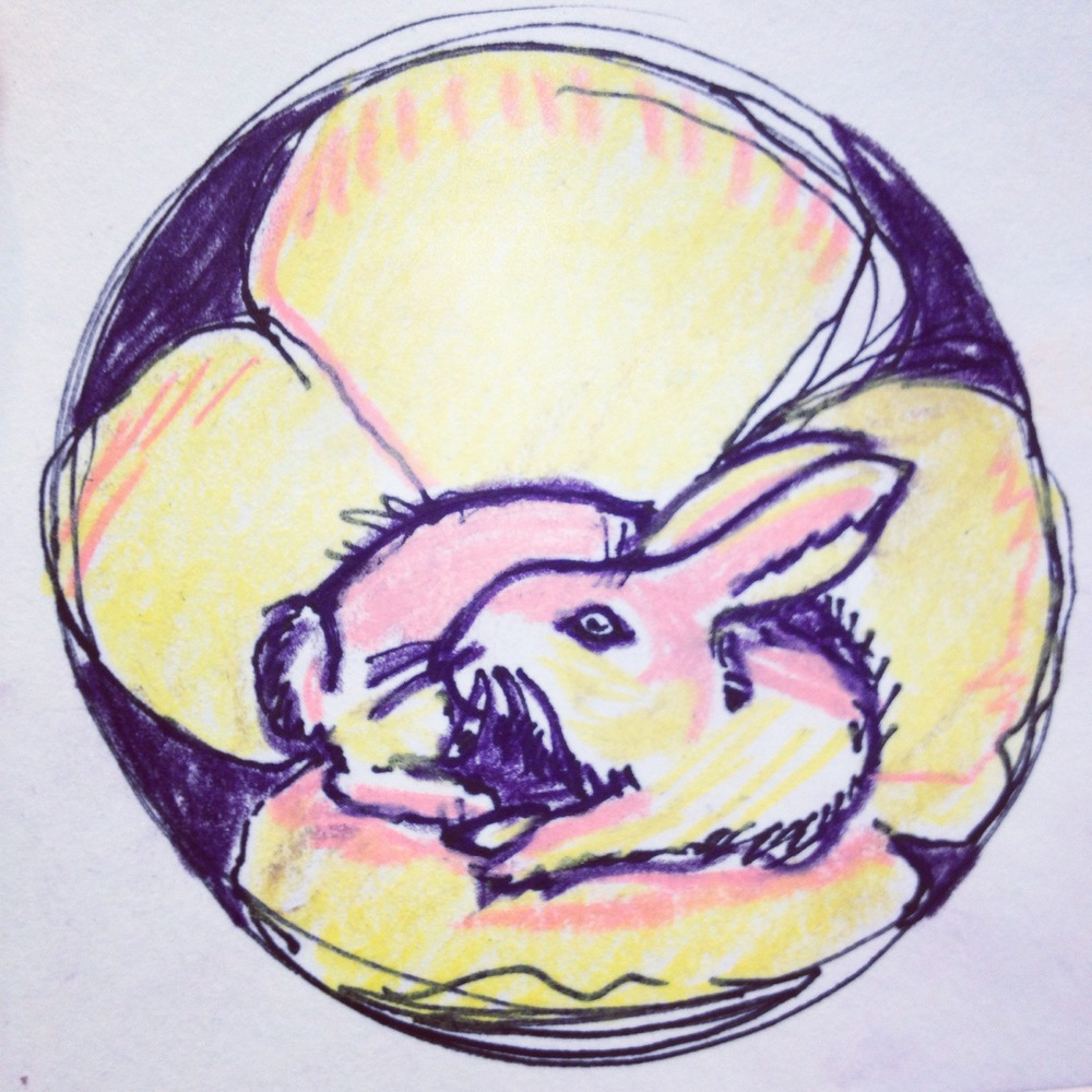 Velveteen Rabbit, Colored pencil