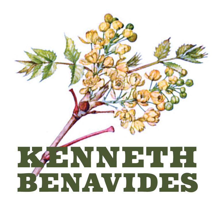 Kenneth Benavides