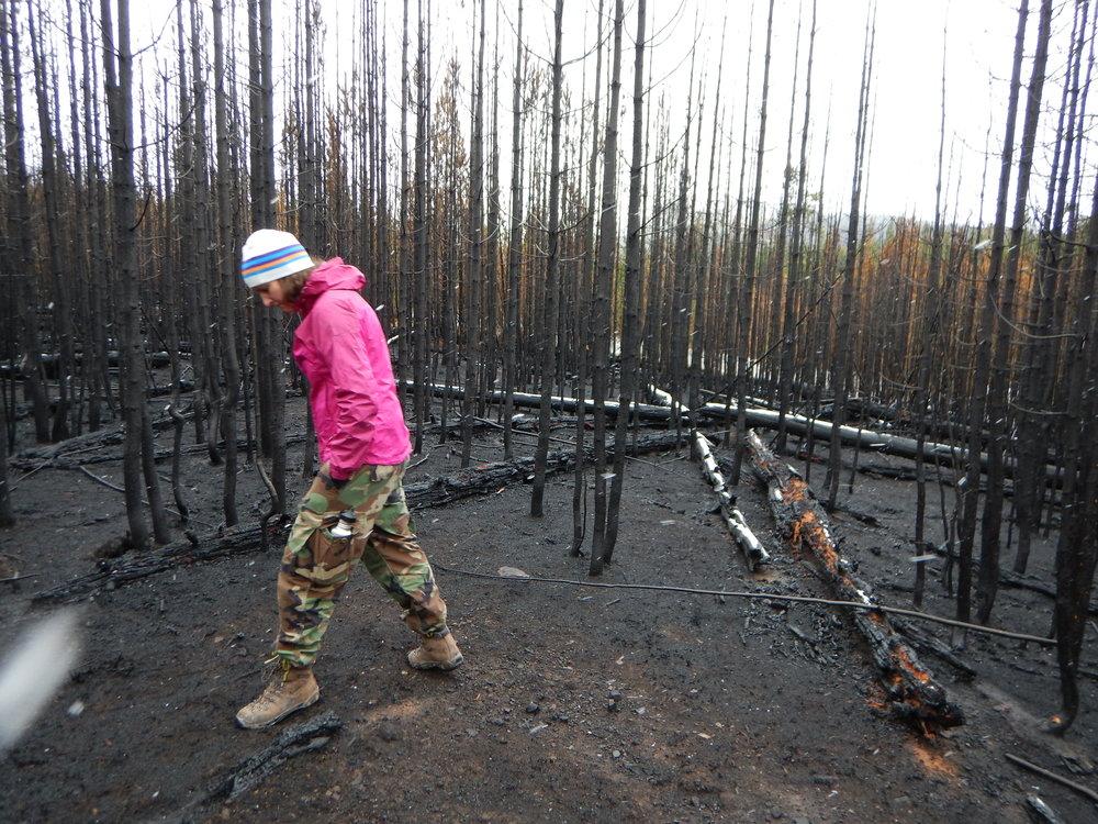 Yellowstone Fall 2016 007.JPG