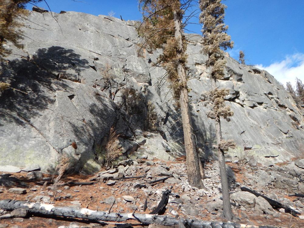 Yellowstone Fall 2016 106.JPG