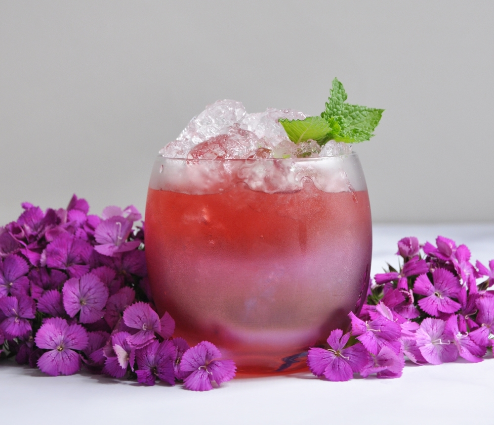 Blackberry Summer Cocktail Recipe