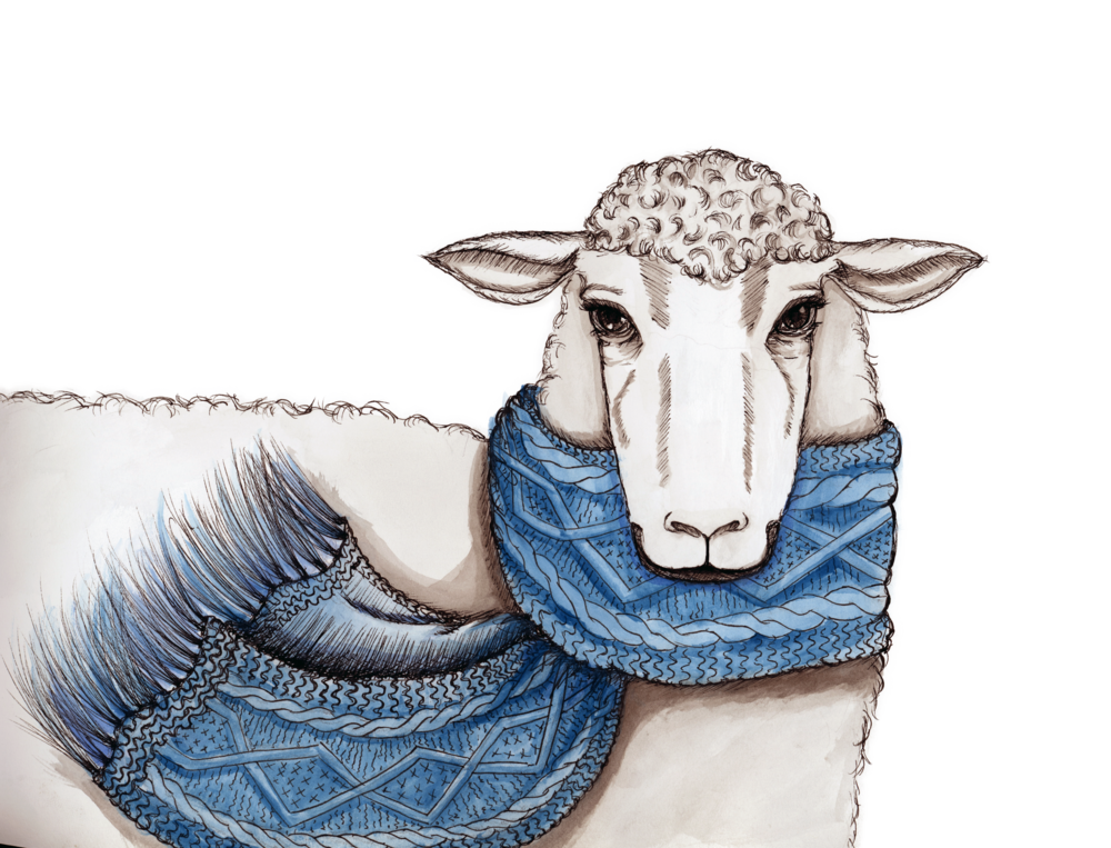 Vogue+Sheep.png