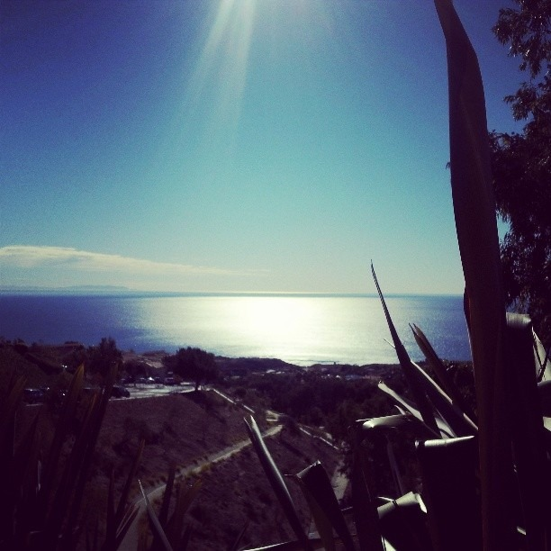 #pepperdine #Malibu this is #Cali on full throttle