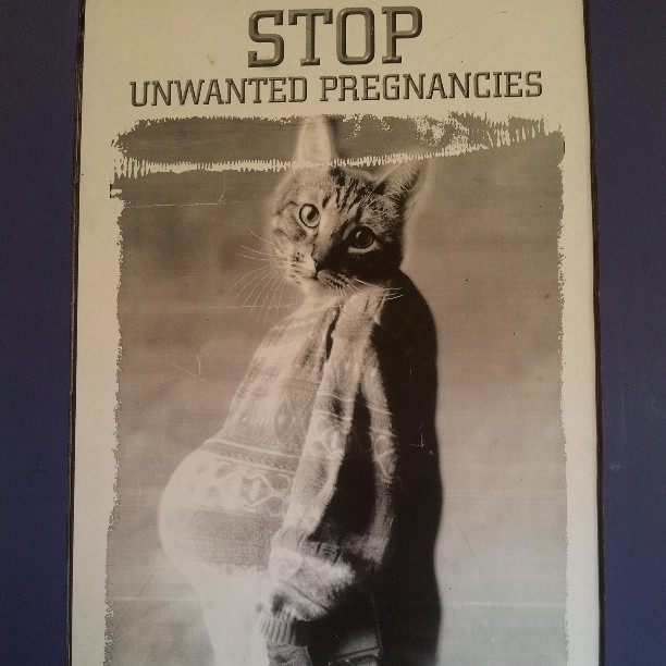 Spay and neuter poster at three vet. #hilarious