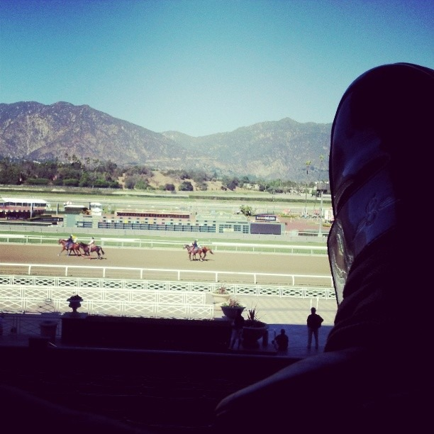 This was my first time at the horse races.