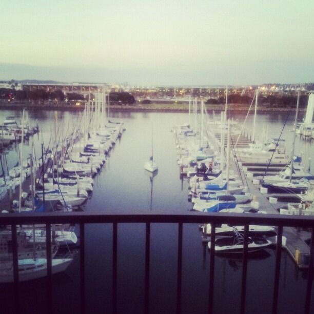 harbor in sd
