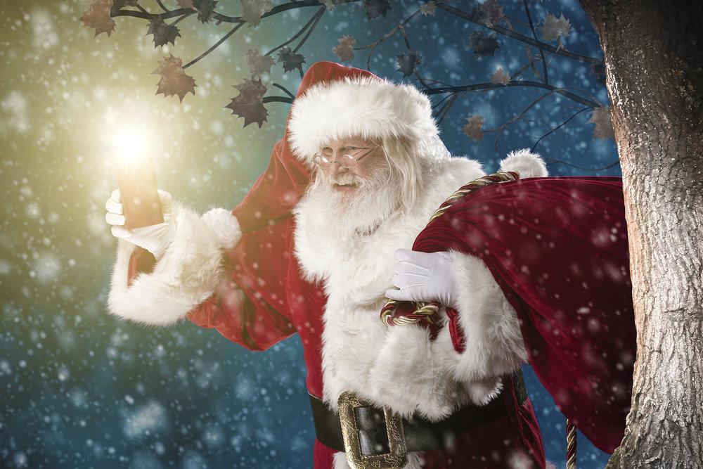 Blakemere Christmas Woodland