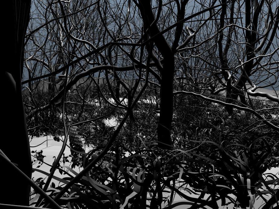 forest_ball_2.JPG